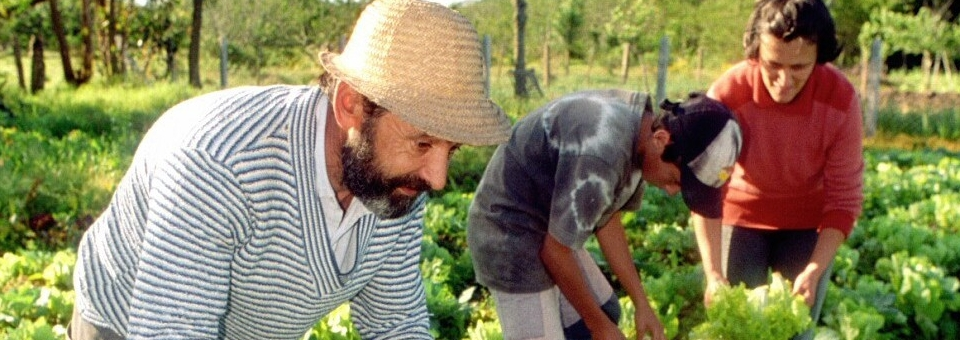La agricultura familiar, tema de interés para la Iglesia